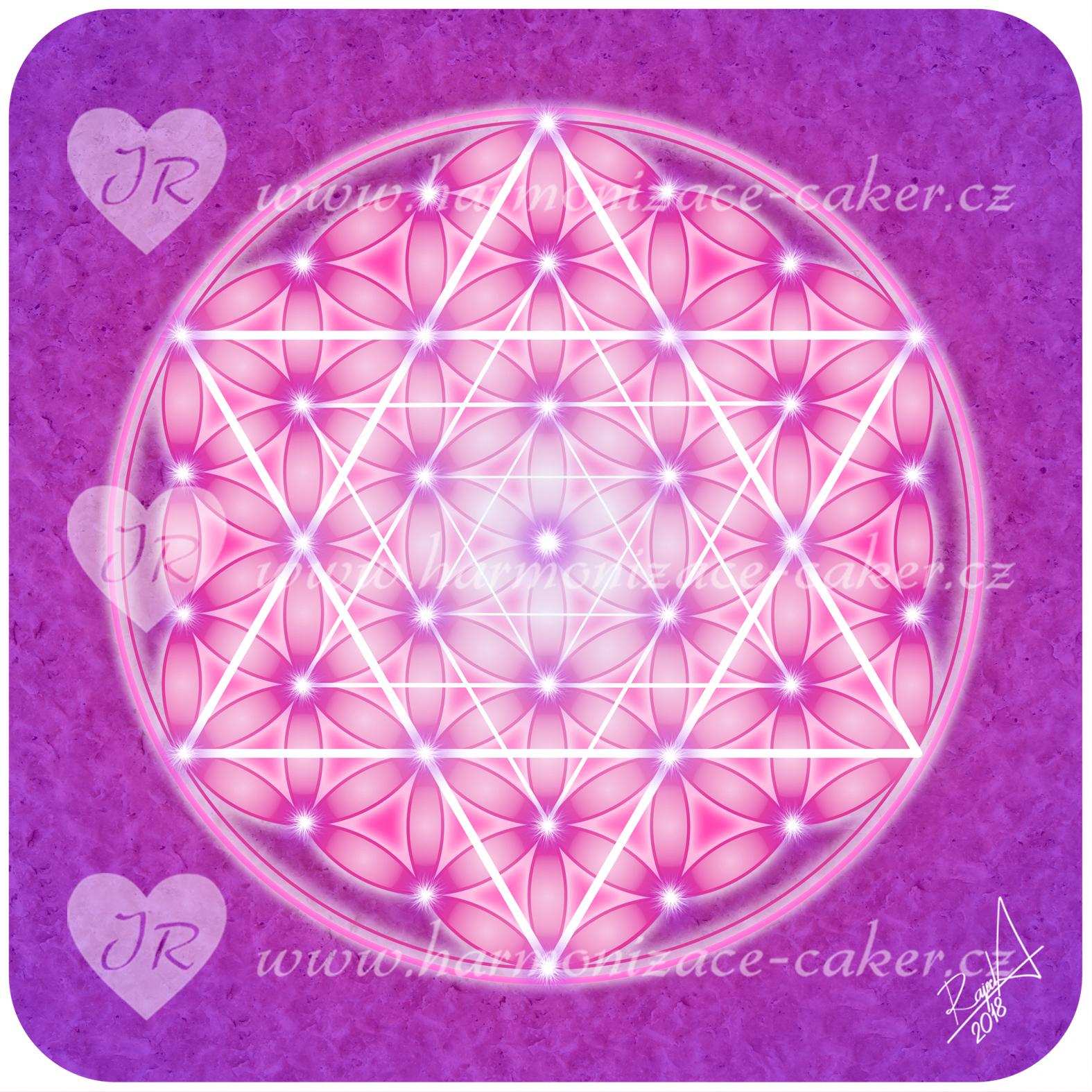 kvet_zivota_purpurovy_svetly